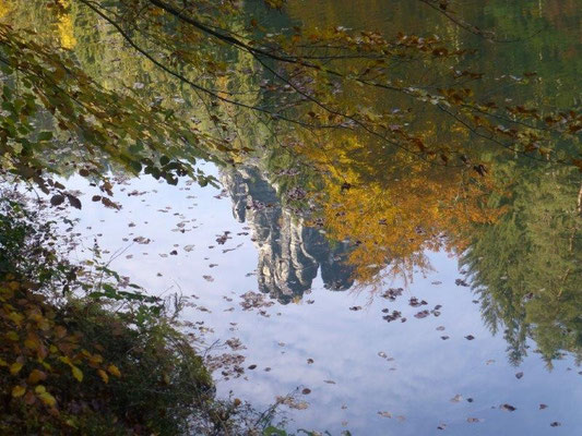 Herbst am Amselsee