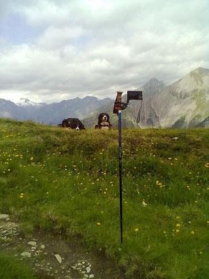 So sieht es aus, wenn wir Selbstauslöserfotos machen :-)