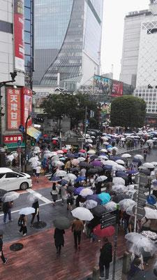 Regenschirmtanz auf der Shibuyakreuzung