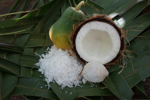 Wie bekommt man das Fruchtfleisch aus der Kokosnuss - am besten mit einer Muschel ausschaben! Papayas wachsen hier auch