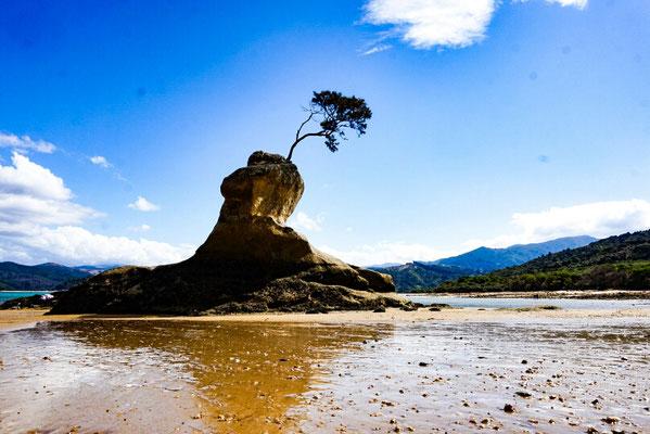 Abel Tasman geheime Bucht