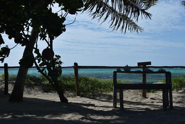 ... direkt am Strand