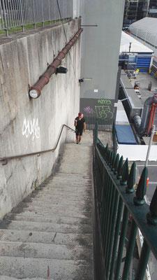 Stadtrundlauf in Sydney