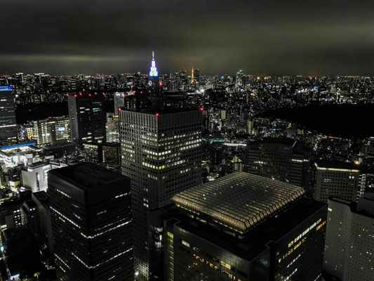 Tokyo nachts. Stadt bis zum Horizont