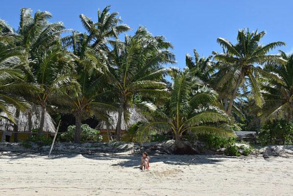 Strand, Palmen, Sonne