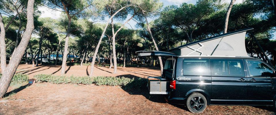 """Pinienwald auf dem Campingplatz """"Laguna Blu"""" bei Alghero, Sardinien"""