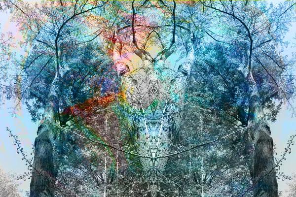 """Kontemplation""8, 2014"