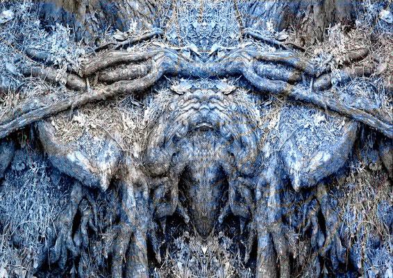"""Kontemplation"" 11 ,2014"
