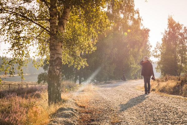 Wandern in der Teverener Heide