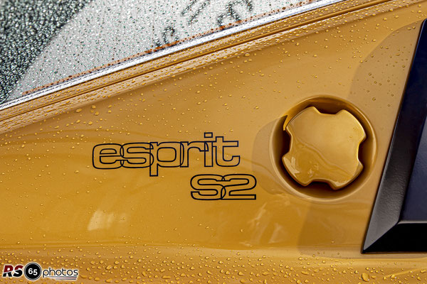 Lotus Esprit S2 - Black&Gold Collection - ChromeCars