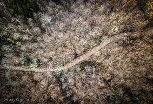 Forststrasse