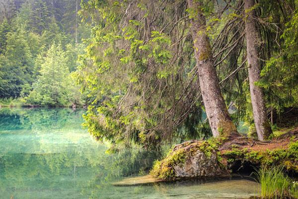 Am Ufer des Crestasees