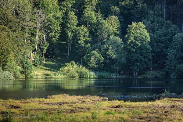 Im hinteren Teil des Sees kann man auch baden