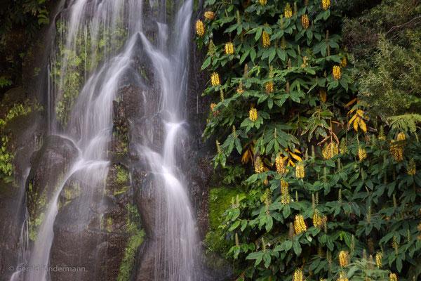 Wasserfall - Ribeira dos Caldeirões
