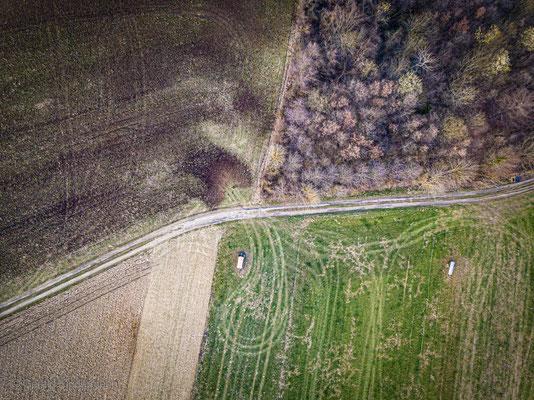 Wald- und Feldflur