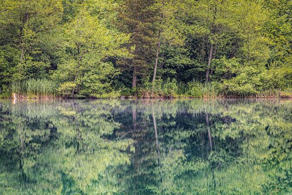 Spiegelung am Crestasee