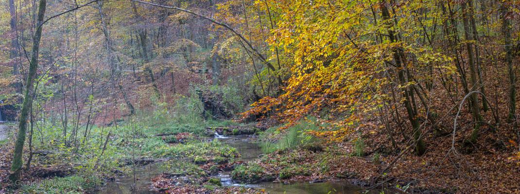 Herbst im Ponlach