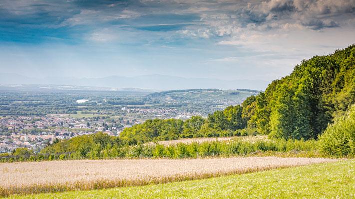 ..auf dem Tüllinger Hügel - Blick nach Norden