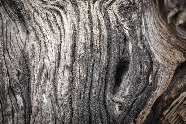 Akazienholz