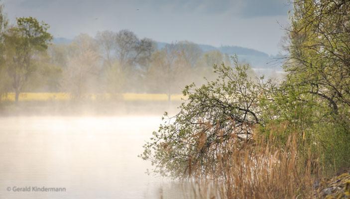 Nebel über den Wassern