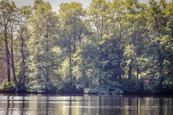 Uferidylle