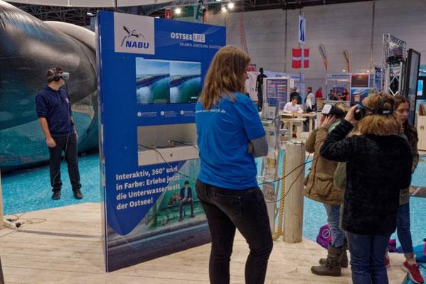 Die Unterwasserwelt der Ostsee virtuell entdecken