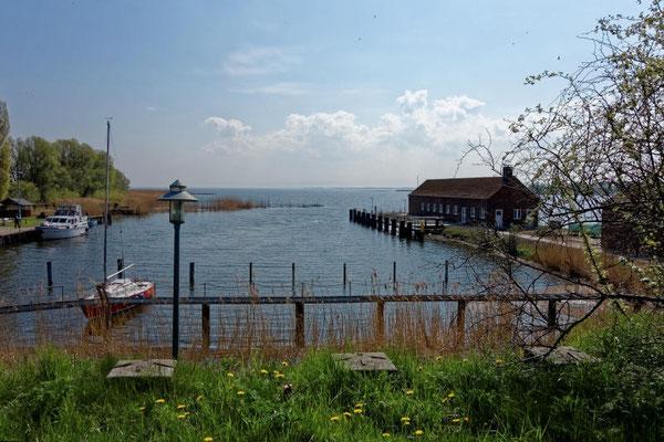 Der kleine Hafen von Karnin. In östlicher Richtung geht es in das Stettiner Haff.
