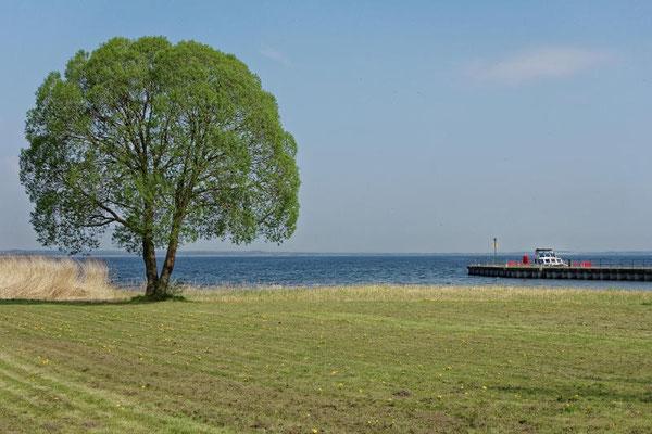 Blick vom Ort Kummerow auf den See