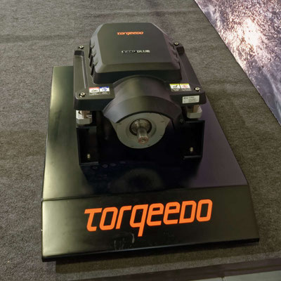 Neben leichten Außenbordern mit Elektroantrieb gibt es auch Einbauvarianten bis 80 PS