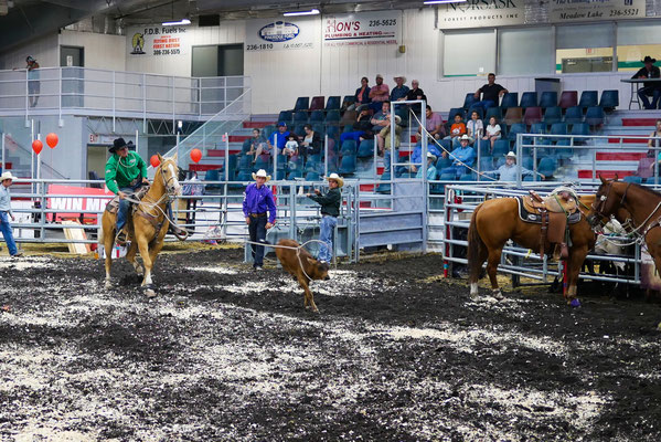 Calf roping, across the arena?