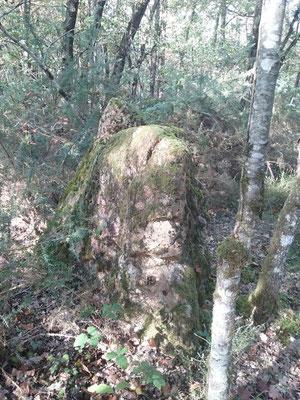 Menhir de la Prade (Chaumussay)