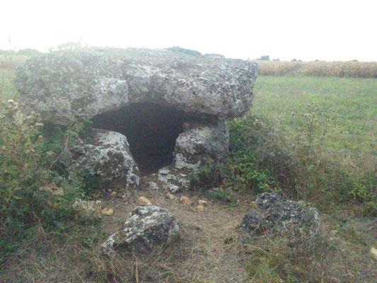 Dolmen dit les Pierres Closes de Charas (B) (Saint-Laurent-de-la-Prée)