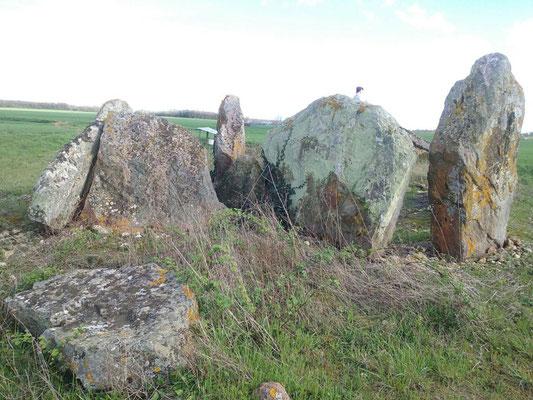 Dolmen dit Le Gras du Chien (Saint Léger de Montbrun