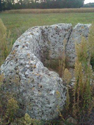Dolmen dit les Pierres Closes de Charas (A) (Saint-Laurent-de-la-Prée)