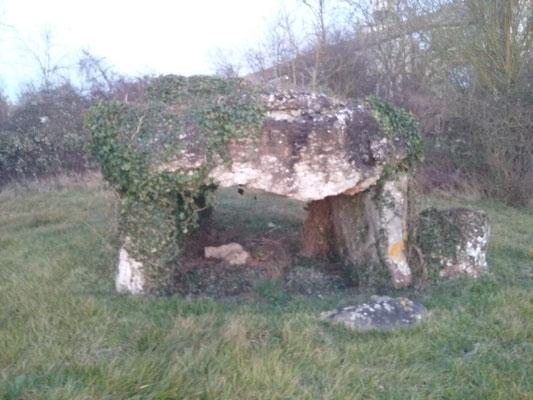 Dolmen de la Pierre Levée (Villiers-au-Bouin)