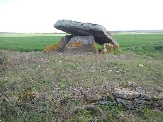 Dolmen dit la Pierre Levée (Saint Léger de Montbrun)