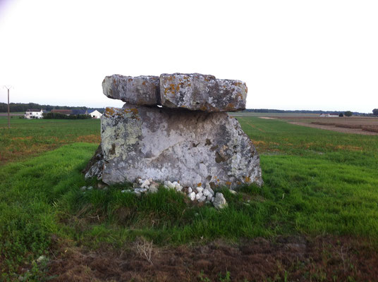 Dolmen dit La Pierre Fondue (Sainte-Maure de Touraine)
