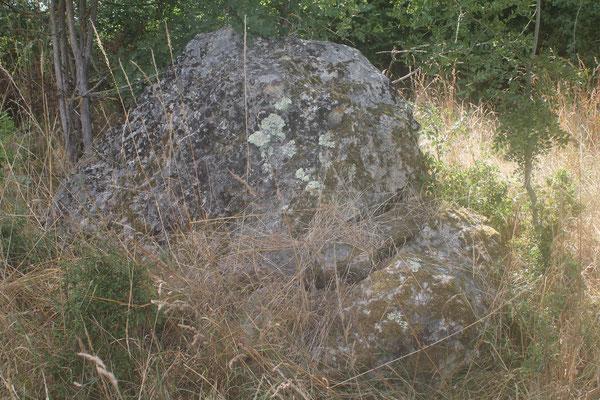 Menhir dit la Pierre à Vinaigre (Saché)