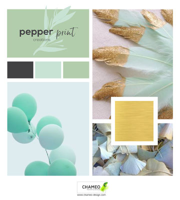 Branding Mood boards-Chameo Design
