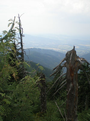 Ein Blick ins Tal...