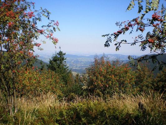 Ein Blick ins Tal