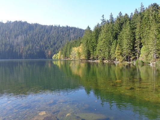 Schwarze See
