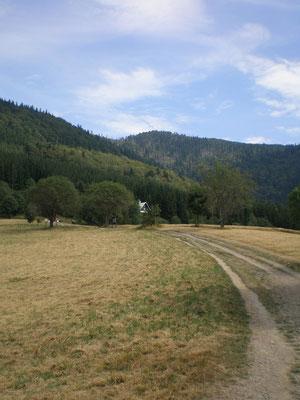 Der Weg nach Lysá Hora - August 2013