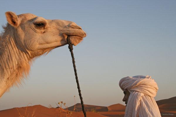 15-47-Marokko