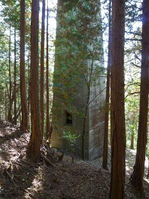 林の中の有越鉄索塔