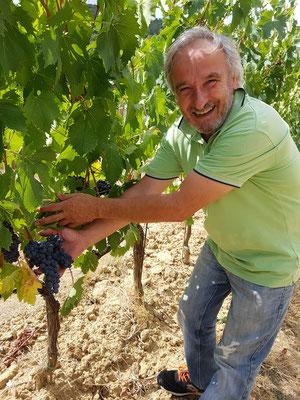 Ermanno Rossi van Podere Della Bruciata is tevreden met de ontwikkeling van zijn druiven