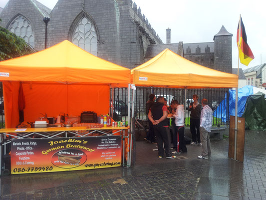 Galway Arts Festival 2012