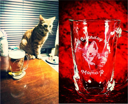 猫 犬 ペット 写真 グラス ジョッキ オリジナル 名入れ ギフト プレゼント オーダーメイド お祝い 記念品 格安 製作 東京 おしゃれ