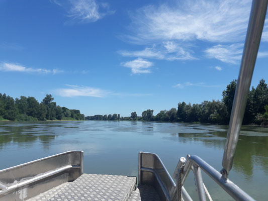 balade sur la Garonne
