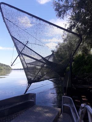 peche sur la Garonne